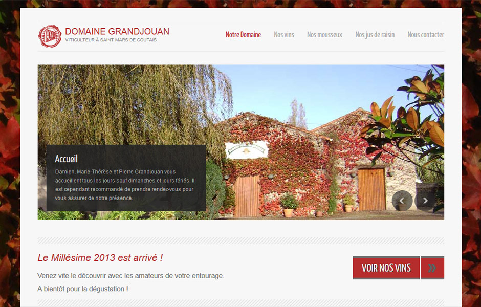 site-internet-antiopa-domaine-grandjouan