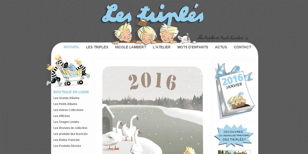 Site e-commerce par Vanessa Le Diraison, société Antiopa près de Ste Lumine.