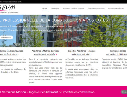 AEVM Véronique MOISON – Assistance & Expertise