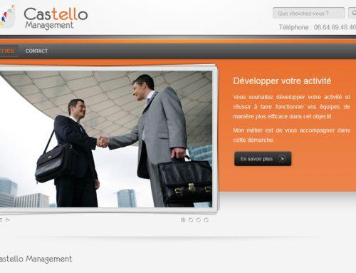 Castello Management – Coach en entreprise