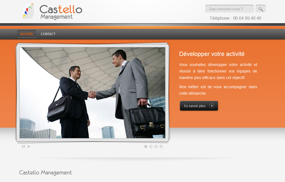 castello-management-site-internet-antiopa