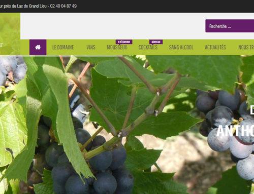 Anthony AMIANT, viticulteur Nantes Sud Loire