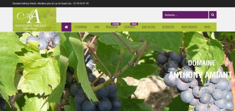 Domaine Anthony Amiant Antiopa création web